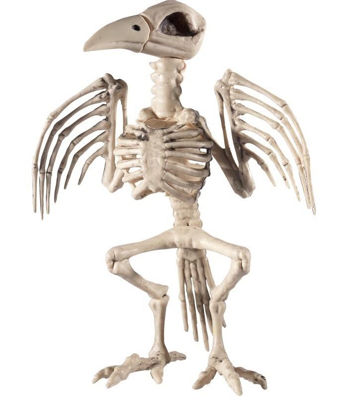 Raven Skeleton Prop