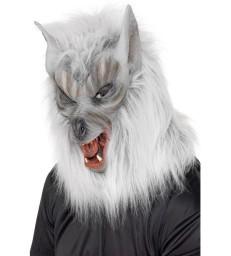 Zombie Evil Madame Costume