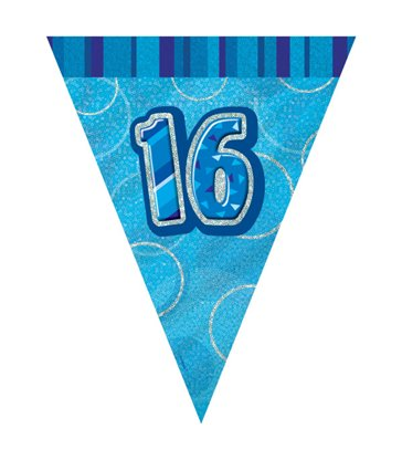 BLUE GLITZ 16 FLAG BANNER 9FT